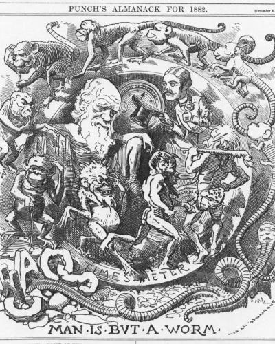 Punch's almanac image: Man is But a Worm